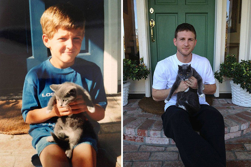 before-and-after-growing-up-cats-6