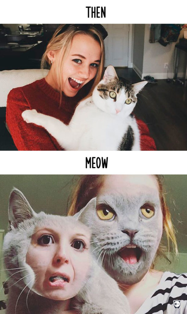 Cats-then-now-funny-technology-change-life-13
