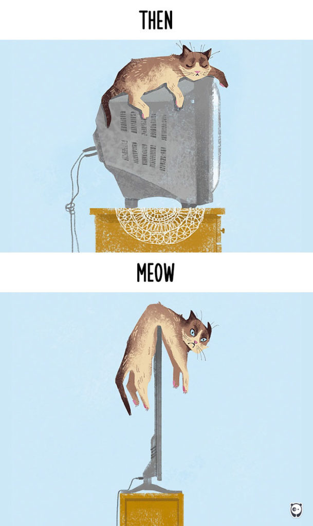 cats-then-now-funny-technology-change-life-1