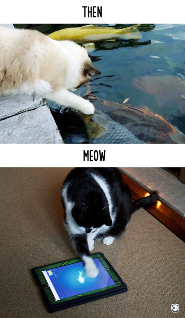 cats-then-now-funny-technology-change-life-7