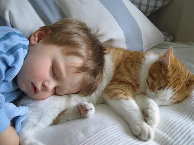 children-need-pets-12