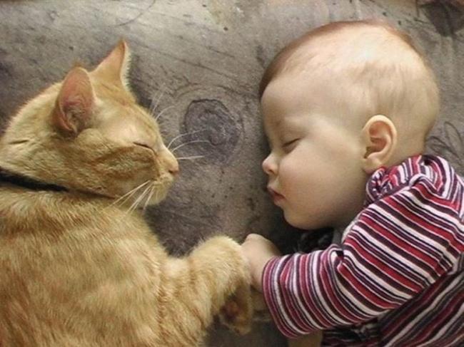 children-need-pets-17