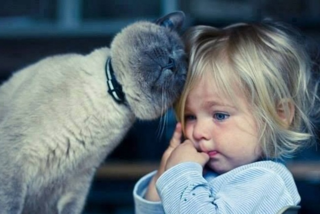 children-need-pets-20