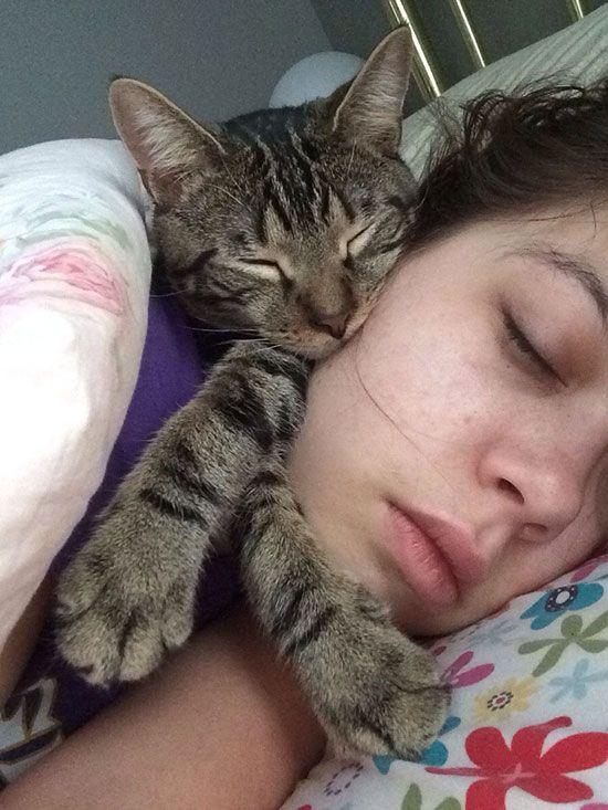 cat-owner-2