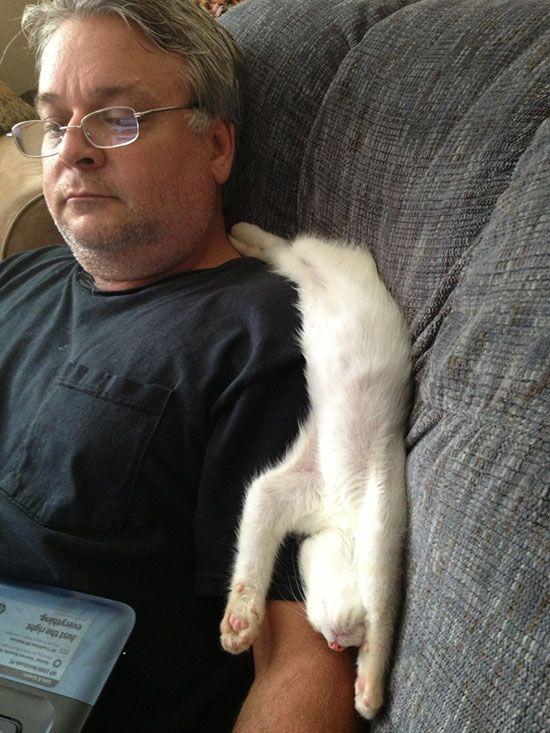cat-owner-24