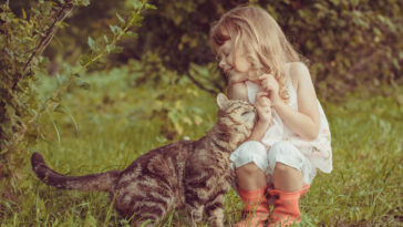 children-cat-playing-photography-fb