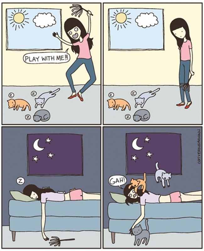 comic-strips-explaning-cats-4