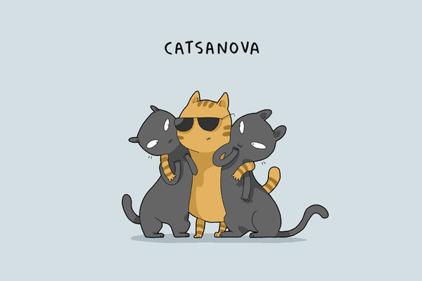 types-cats-05