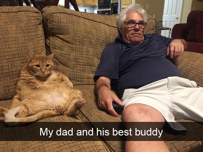 hilarious-cat-snapchats-21