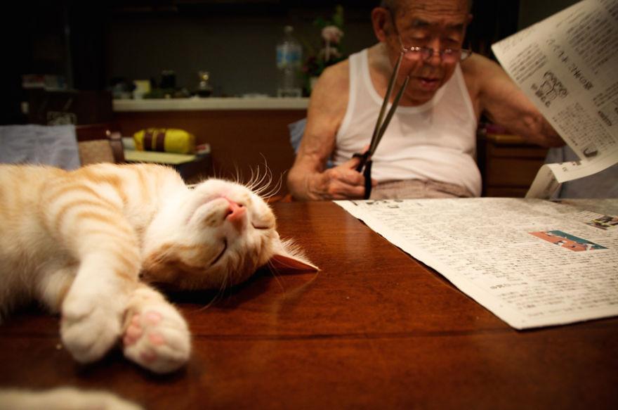 cat-and-grandpa-15