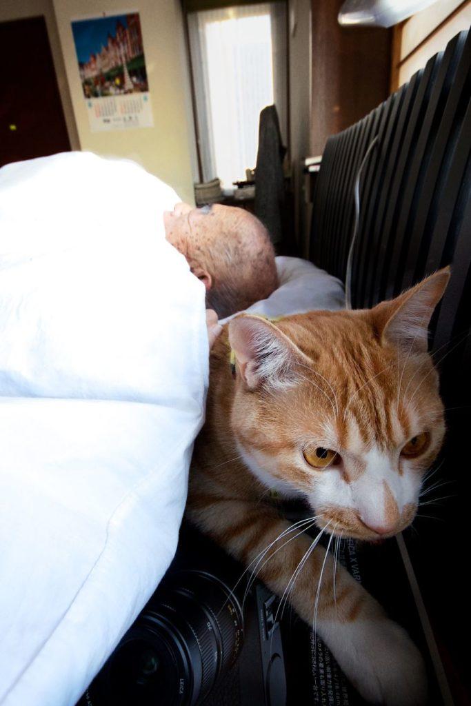 cat-and-grandpa-16