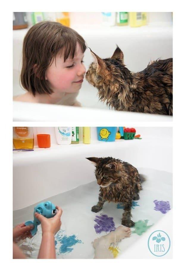cat-mans-best-friend-02
