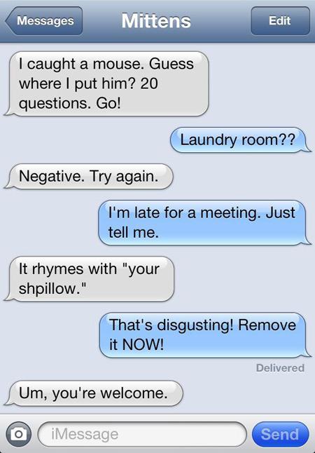 cat-texts-02