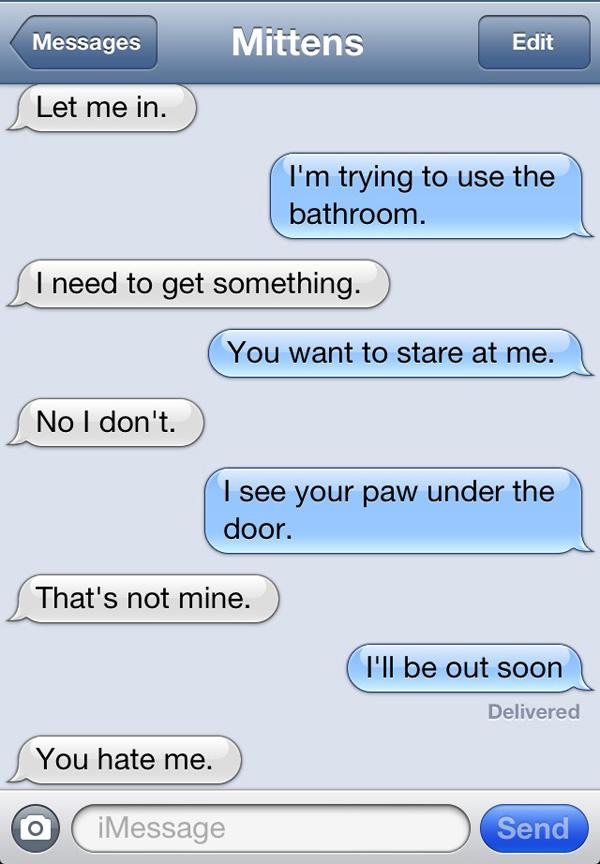 cat-texts-04