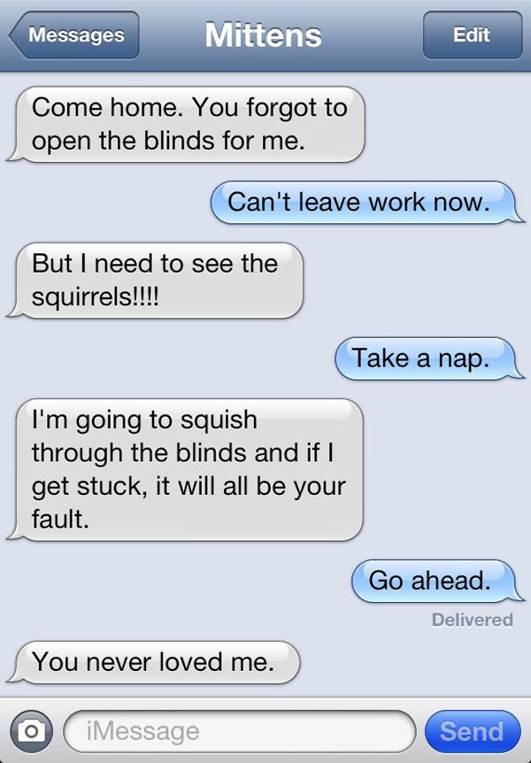 cat-texts-08