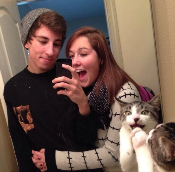 funny-cat-photobombs-07