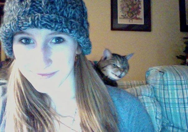 funny-cat-photobombs-12