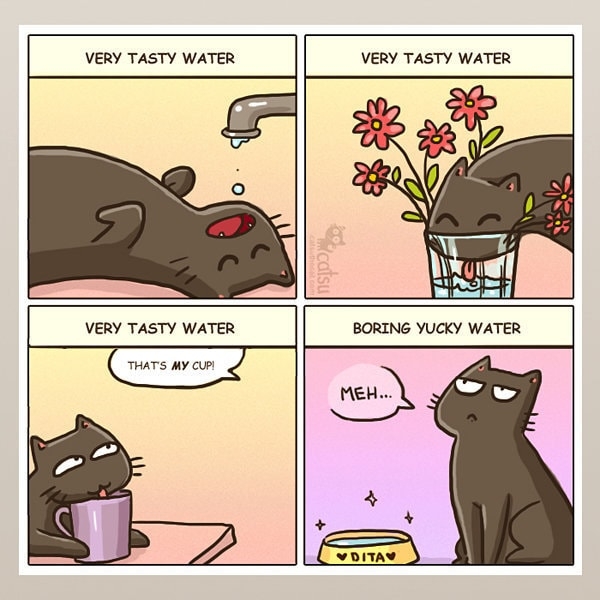Comic-Weird-Ways-of-Cats-1