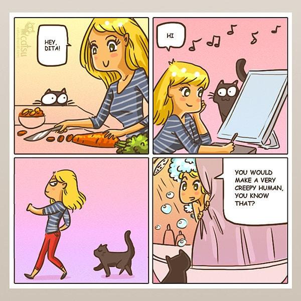 Comic-Weird-Ways-of-Cats-11