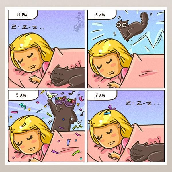 Comic-Weird-Ways-of-Cats-3