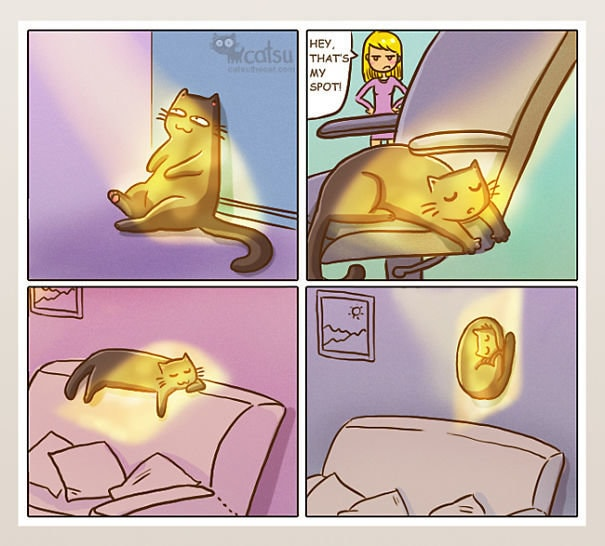 Comic-Weird-Ways-of-Cats-4