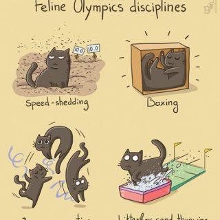 Comic-Weird-Ways-of-Cats-8