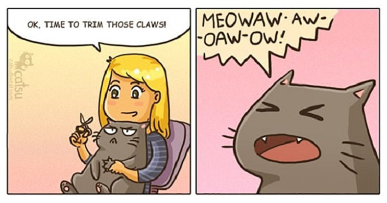Featured-Comic-Weird-Ways-of-Cats-FB