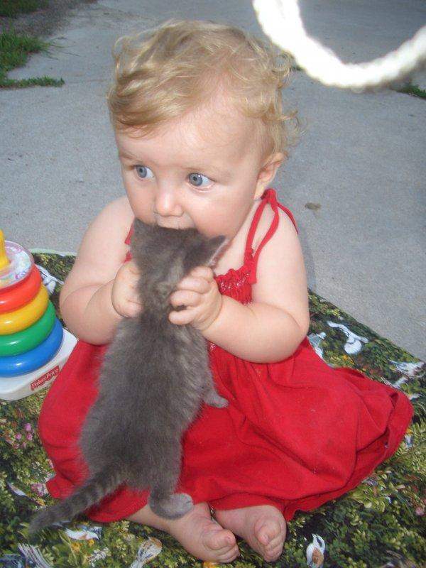 babies-cats-24