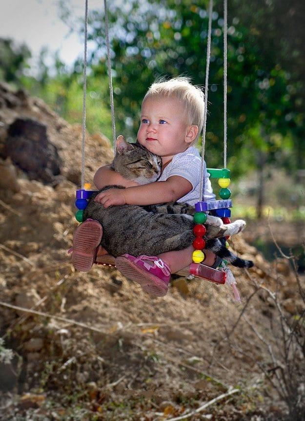 babies-cats-25