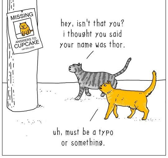 cat-talk-02