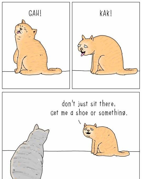 cat-talk-03