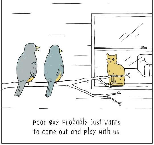 cat-talk-04