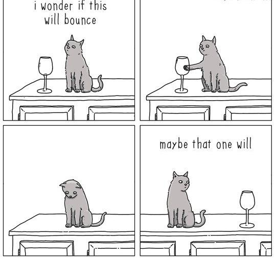 cat-talk-05