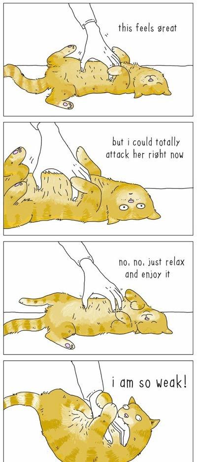 cat-talk-07