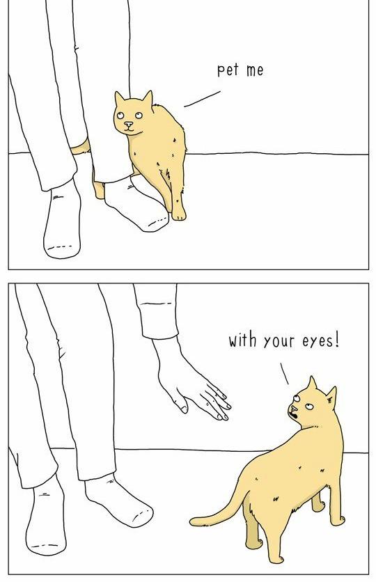 cat-talk-08