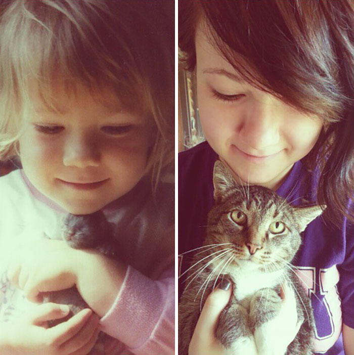cats-growing-up-before-after-user-submissions-1