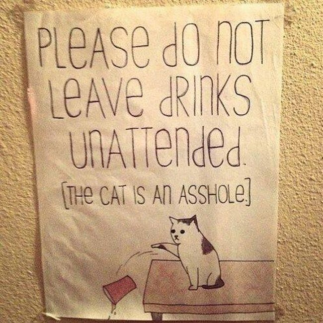 funny-cat-signs-02