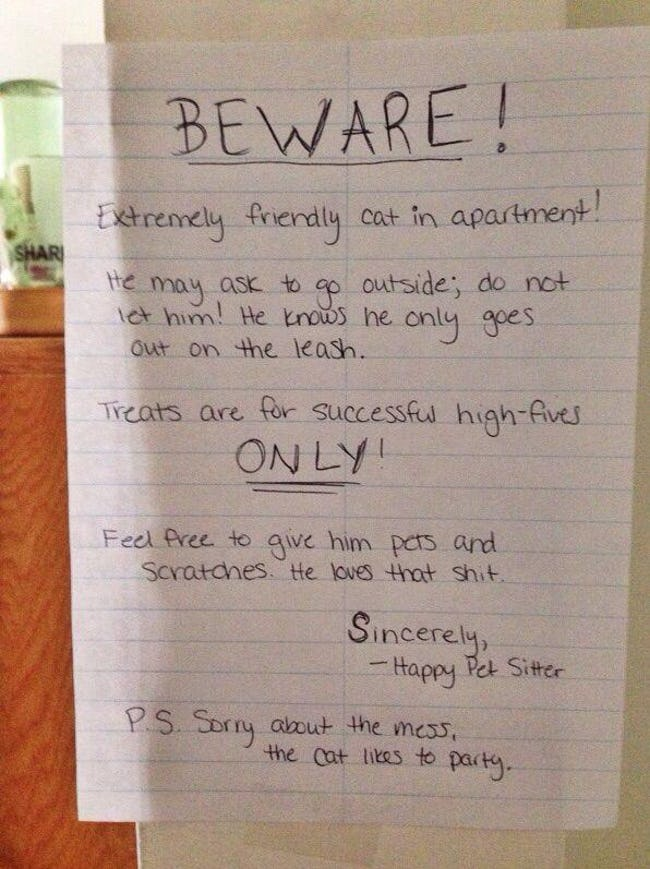 funny-cat-signs-04