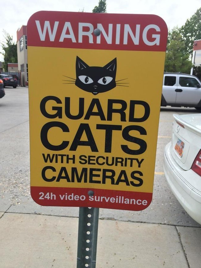 funny-cat-signs-09