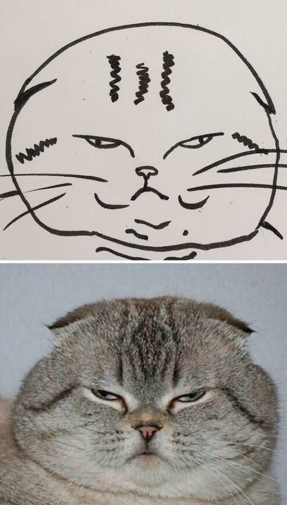 funny-poorly-drawn-cats-10