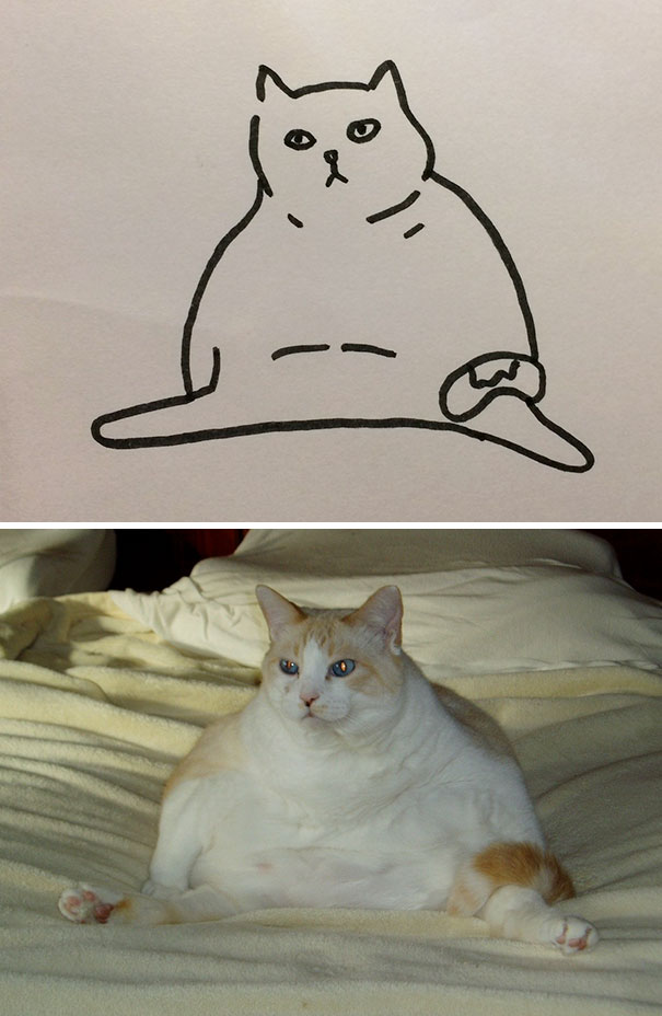 funny-poorly-drawn-cats-14