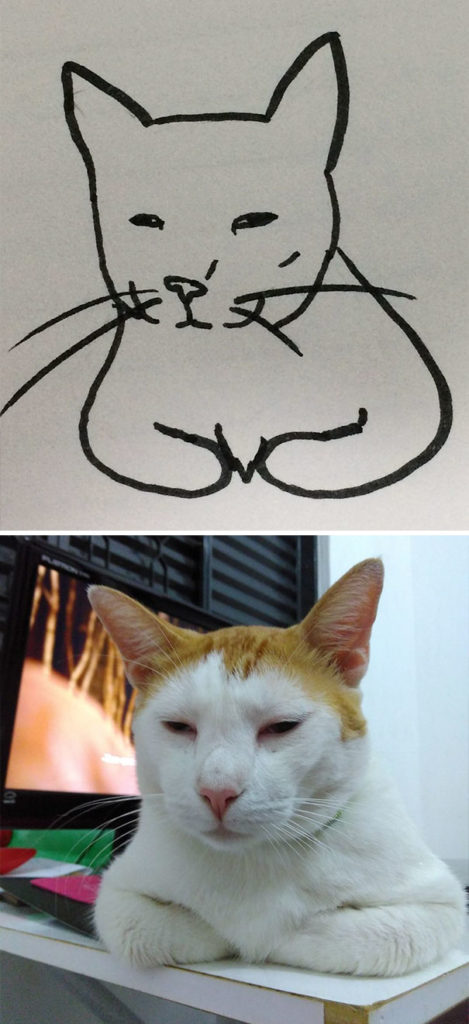 funny-poorly-drawn-cats-15