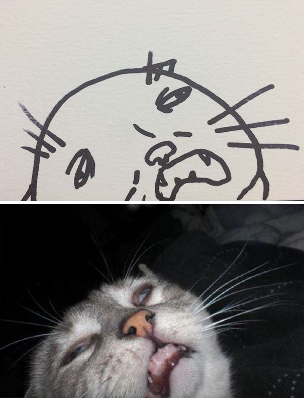 funny-poorly-drawn-cats-2