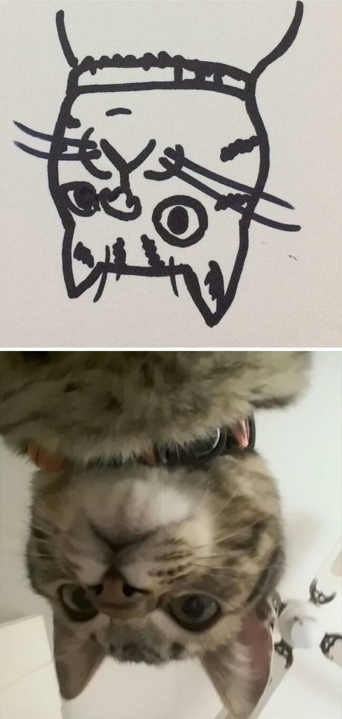 funny-poorly-drawn-cats-20