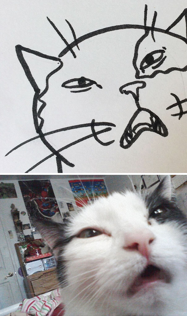 funny-poorly-drawn-cats-23