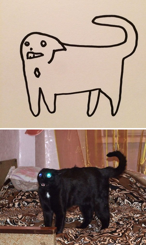 funny-poorly-drawn-cats-4