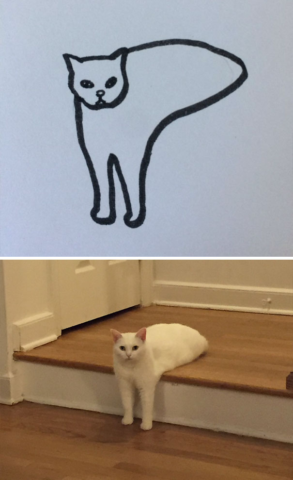 funny-poorly-drawn-cats-5