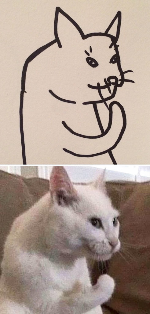 funny-poorly-drawn-cats-9