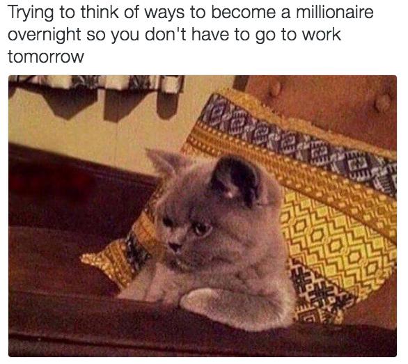 relatable-cat-01