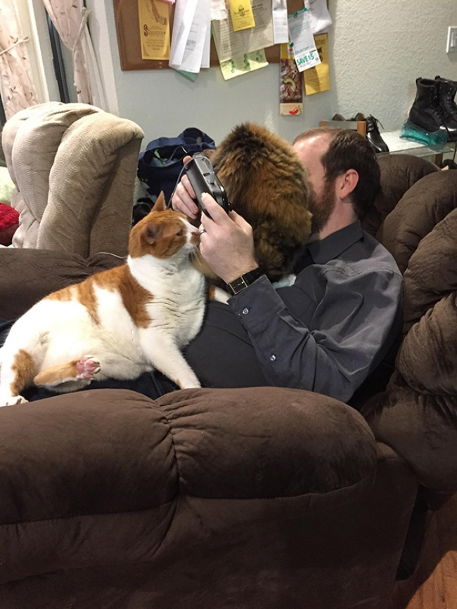 Cats-Personal-Space-12